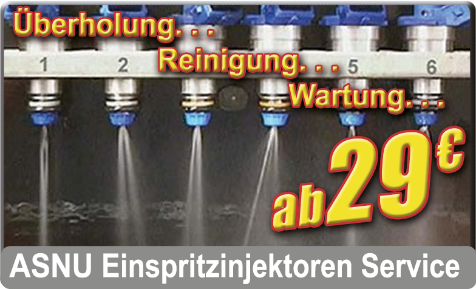 ASNU Einspritzdüsen / Injektoren Service